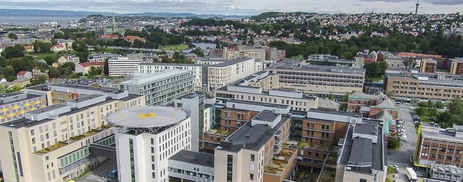 Om Oss St Olavs Hospital